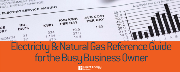 electricity and natural gas reference guide